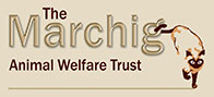 The Marchig Animal Welfare Trust